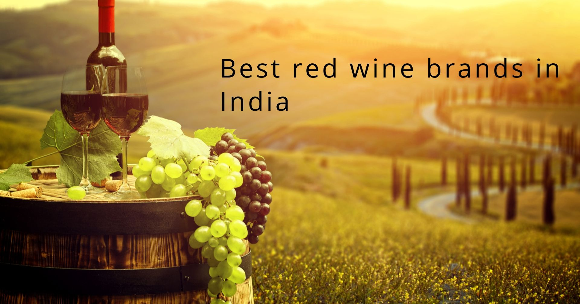 Best red wine brands in India